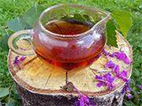 Полезные и лечебные свойства Иван-чая